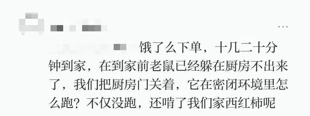 上海调查公司那家好