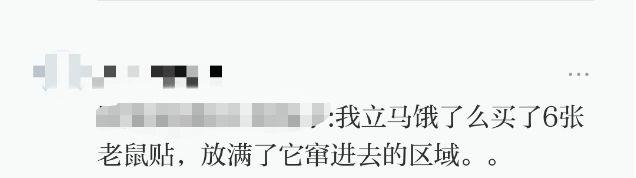 上海调查公司那家好-盒马送来的吐司窜出活老鼠,恶心了